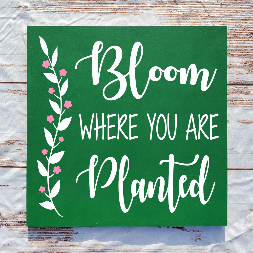 """""""Bloom where you are planted"""" on a"""