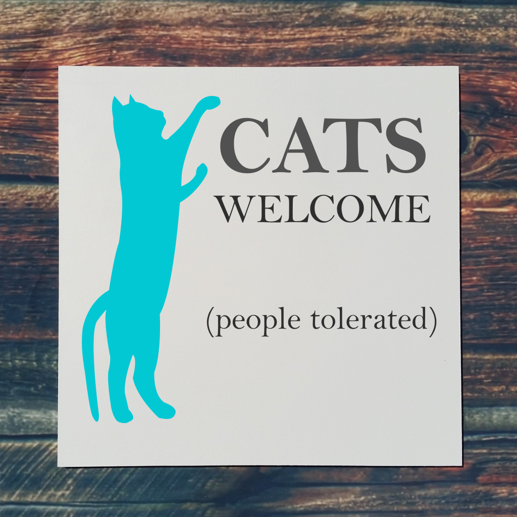 515 - Cats Welcome