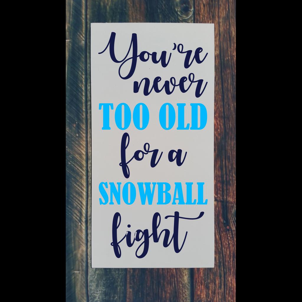 688 - Snowball Fight.jpg